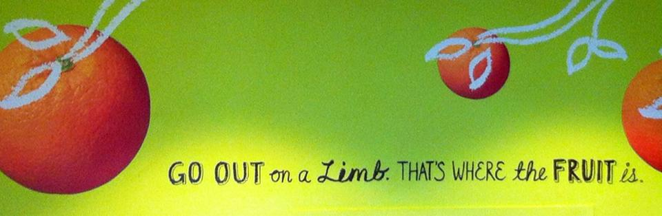 Go out on a limb. That's where the fruit is.